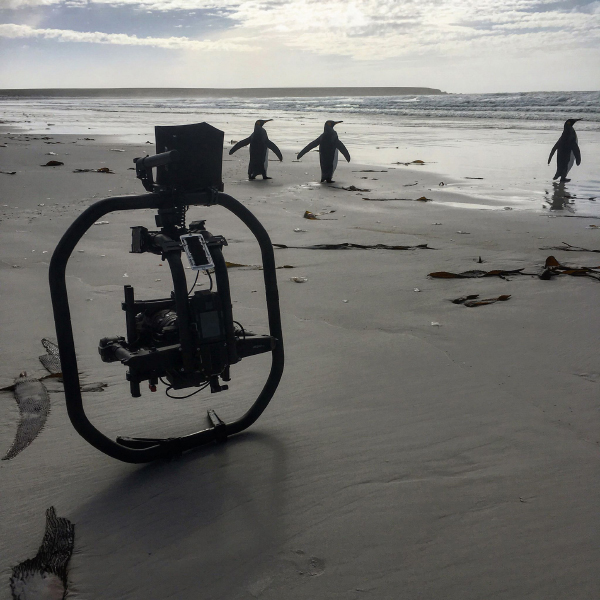 MOVI pro pour tournage en drone